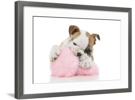 Puppies 057-Andrea Mascitti-Framed Art Print