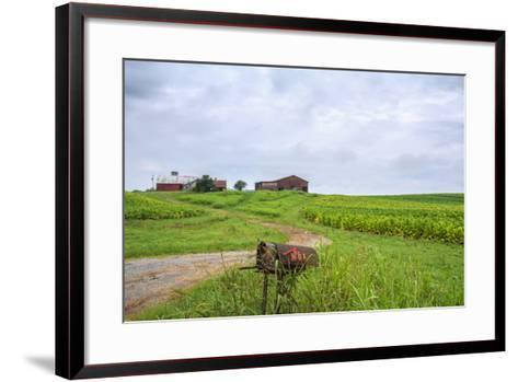 Rusty Mailbox-Bob Rouse-Framed Art Print