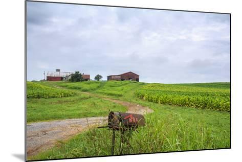 Rusty Mailbox-Bob Rouse-Mounted Photographic Print