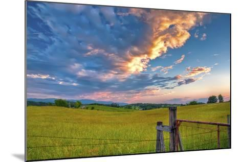 branch's sunset-Bob Rouse-Mounted Photographic Print