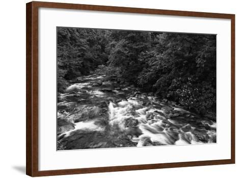 West Prong River-Bob Rouse-Framed Art Print