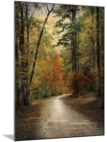 Autumn Forest 4-Jai Johnson-Mounted Photographic Print