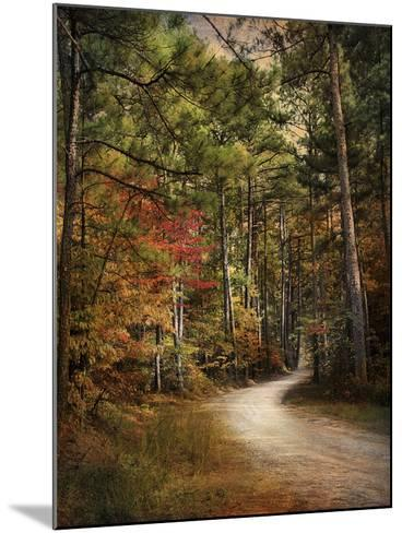 Autumn Forest 2-Jai Johnson-Mounted Photographic Print