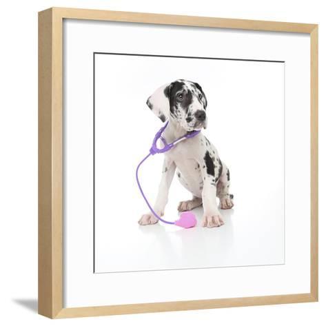 Puppies 026-Andrea Mascitti-Framed Art Print