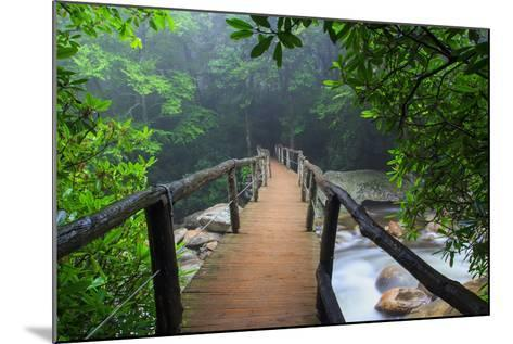 Wooden Bridge in Fog-Bob Rouse-Mounted Photographic Print