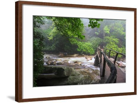 Wooden Bridge-Bob Rouse-Framed Art Print
