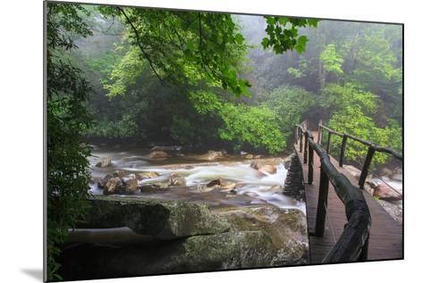 Wooden Bridge-Bob Rouse-Mounted Photographic Print