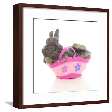 Rabbits 003-Andrea Mascitti-Framed Art Print