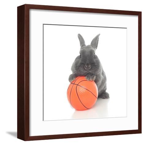 Rabbits 016-Andrea Mascitti-Framed Art Print