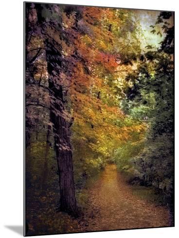 Autumn Trail-Jessica Jenney-Mounted Photographic Print