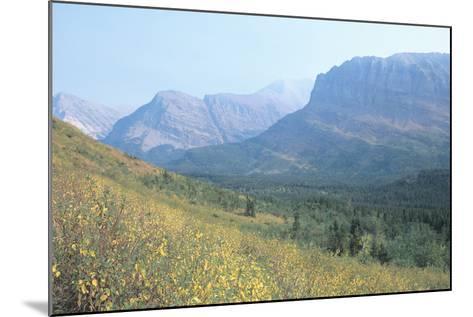 Glacier 8A-Gordon Semmens-Mounted Photographic Print