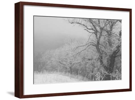 Hawk's Nest 2-Gordon Semmens-Framed Art Print