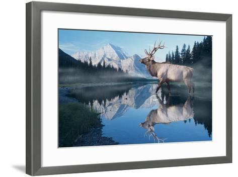 Reflections of Glacier-Gordon Semmens-Framed Art Print