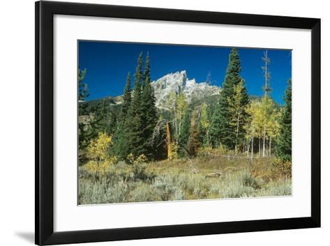 Grand Teton 11-Gordon Semmens-Framed Art Print