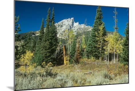 Grand Teton 11-Gordon Semmens-Mounted Photographic Print