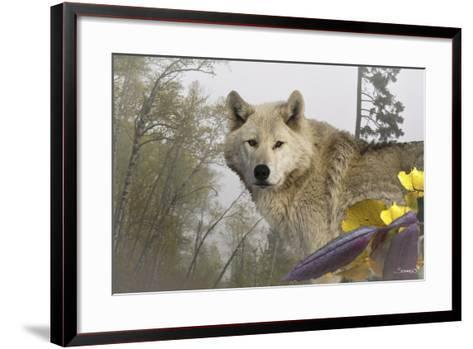 White Wolf-Gordon Semmens-Framed Art Print