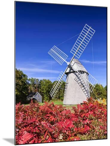 Old Higgins Farm Windmill-Michael Blanchette-Mounted Photographic Print