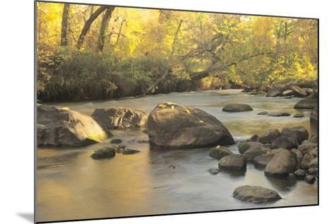 Buffalo River 06-Gordon Semmens-Mounted Photographic Print