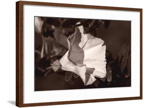 Buffalo River 9-Gordon Semmens-Framed Art Print