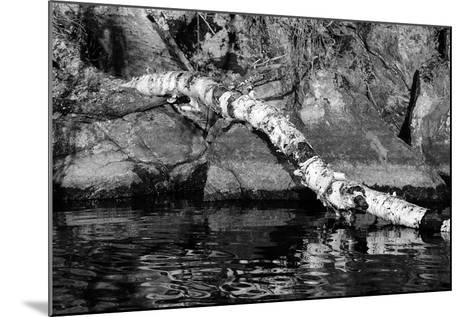 Ash River 11-Gordon Semmens-Mounted Photographic Print