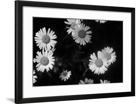 Ash River 09-Gordon Semmens-Framed Art Print