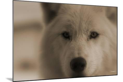 Wolf-Gordon Semmens-Mounted Photographic Print