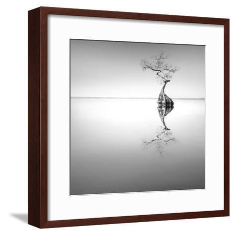 Zen Tree-Moises Levy-Framed Art Print
