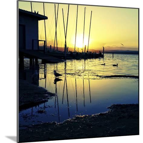 Sunset Conversations-Incredi-Mounted Photographic Print