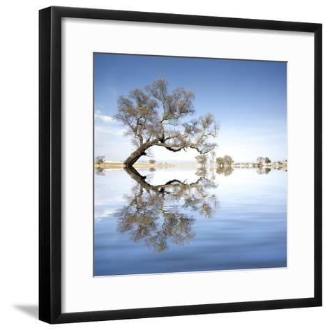 Arbol en Agua 2 Color-Moises Levy-Framed Art Print