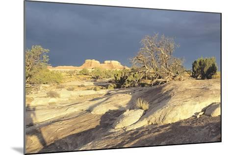 Canyonland 14-Gordon Semmens-Mounted Photographic Print