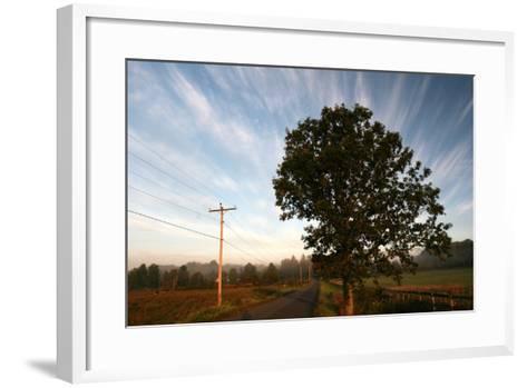 Tree Pole Road Sky-Robert Goldwitz-Framed Art Print