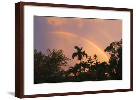 Rainbow Palms-Robert Goldwitz-Framed Art Print