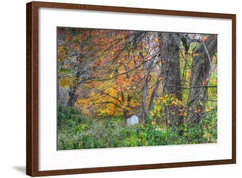 Autumn Shed-Robert Goldwitz-Framed Art Print
