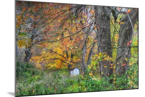 Autumn Shed-Robert Goldwitz-Mounted Photographic Print