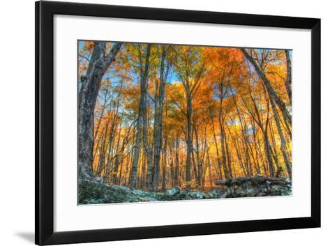 Winding Hills Park-Robert Goldwitz-Framed Art Print