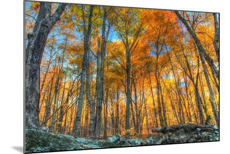 Winding Hills Park-Robert Goldwitz-Mounted Photographic Print
