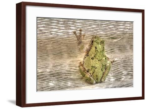 Tree Frog-Robert Goldwitz-Framed Art Print