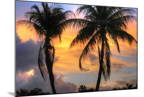 Key West Two Palm Sunrise-Robert Goldwitz-Mounted Photographic Print