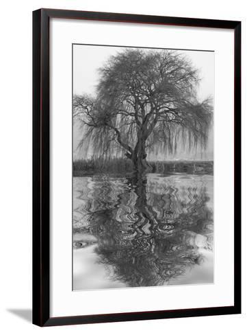 Sauce en Agua 1-Moises Levy-Framed Art Print
