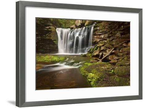Spring at Elakala Falls-Michael Blanchette-Framed Art Print