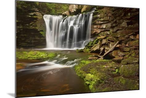 Spring at Elakala Falls-Michael Blanchette-Mounted Photographic Print