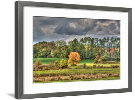 Drak Sky Shiningtree-Robert Goldwitz-Framed Art Print