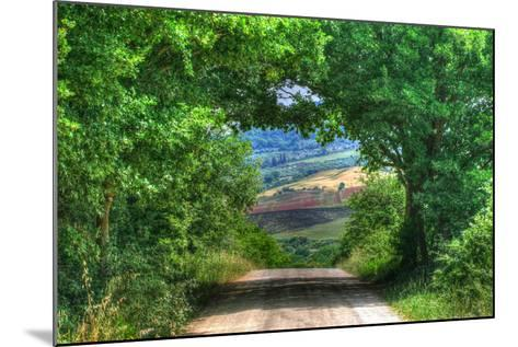 Tuscan Tree Tunnel-Robert Goldwitz-Mounted Photographic Print