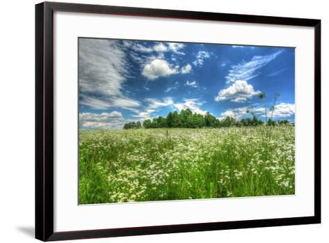 Daisy Sky-Robert Goldwitz-Framed Art Print