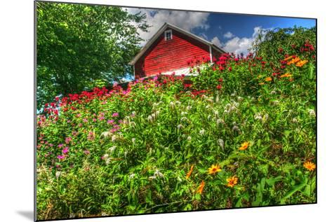 Red Barn and Flowers-Robert Goldwitz-Mounted Photographic Print