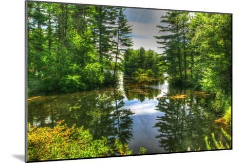 Pond and Pines-Robert Goldwitz-Mounted Photographic Print