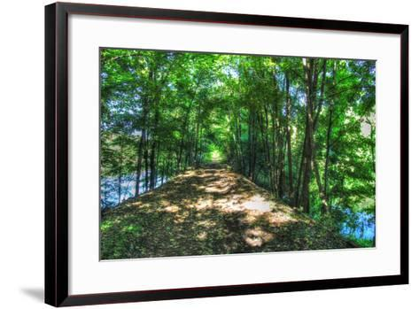 Railtrail Viaduct-Robert Goldwitz-Framed Art Print