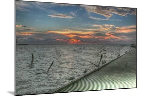 Key West Sunrise Gulls and Pier-Robert Goldwitz-Mounted Photographic Print