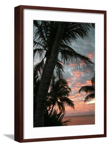 Palm Sunrise Vertical-Robert Goldwitz-Framed Art Print