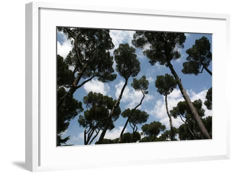 Tuscan Trees Clouds-Robert Goldwitz-Framed Art Print